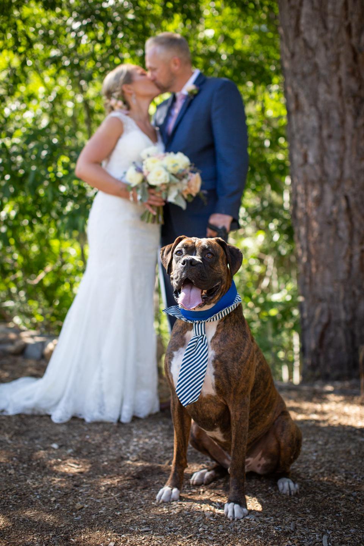 Wedding Photos-9.jpg