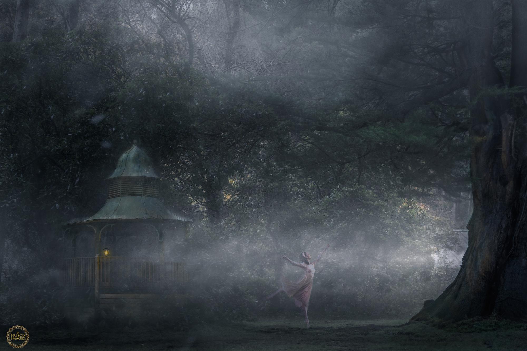'Ballet in the Mist'
