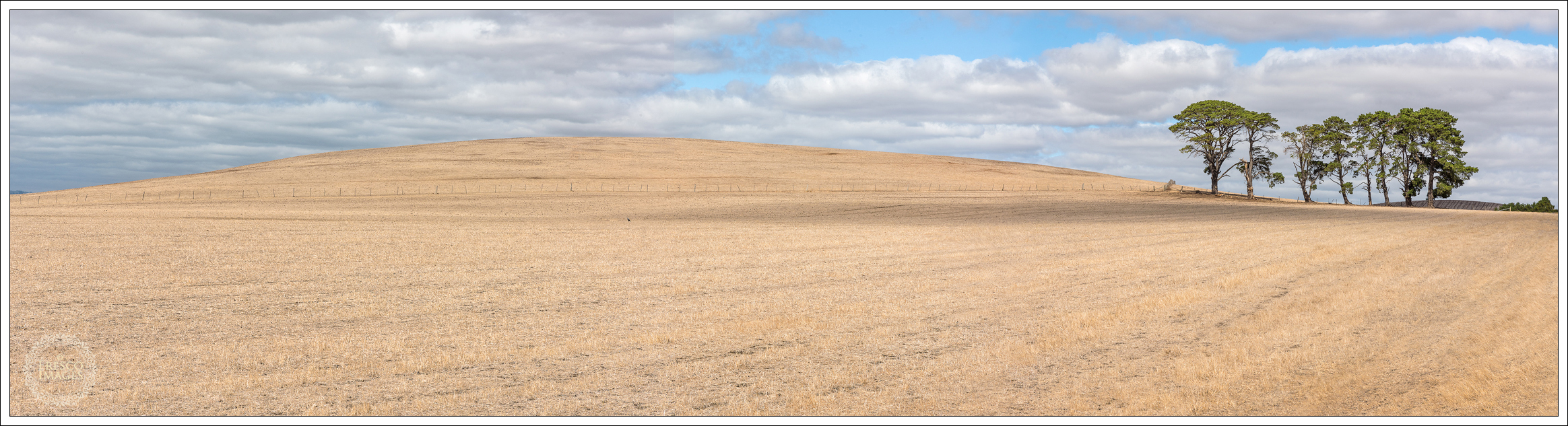 'Wide Open Spaces'