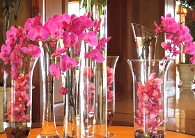 Upon arriving, we were greeted by an abundant display of pink orchids in the hall.