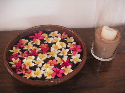 Frangipani flowers in white and pink welcome guests