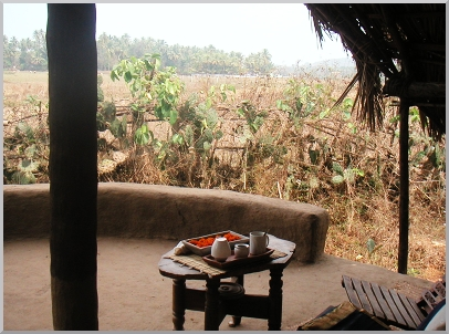 The sitting area in front of our tent. We are served tea in the morning.  We stay in Rajastani tents set under thatched huts in the middle of fields. The tents look beautiful. Like stepping back in time, on a safari, out in the Indian out back.