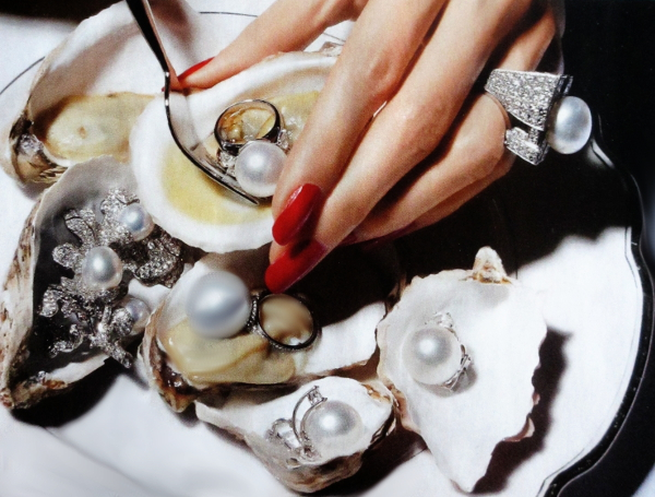 I would like to have this oyster served to me... find the pearls in the oyster.