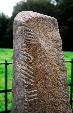 Ogham Stone still in very good shape