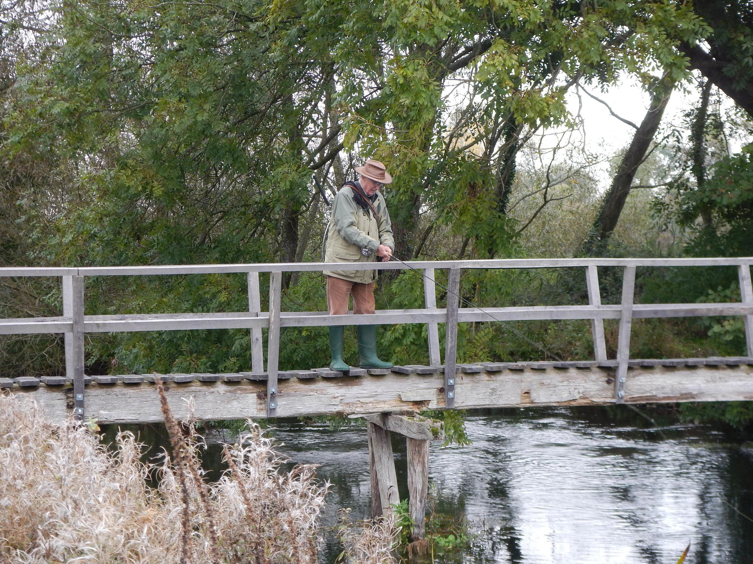 Where's that Salmon - David Gould