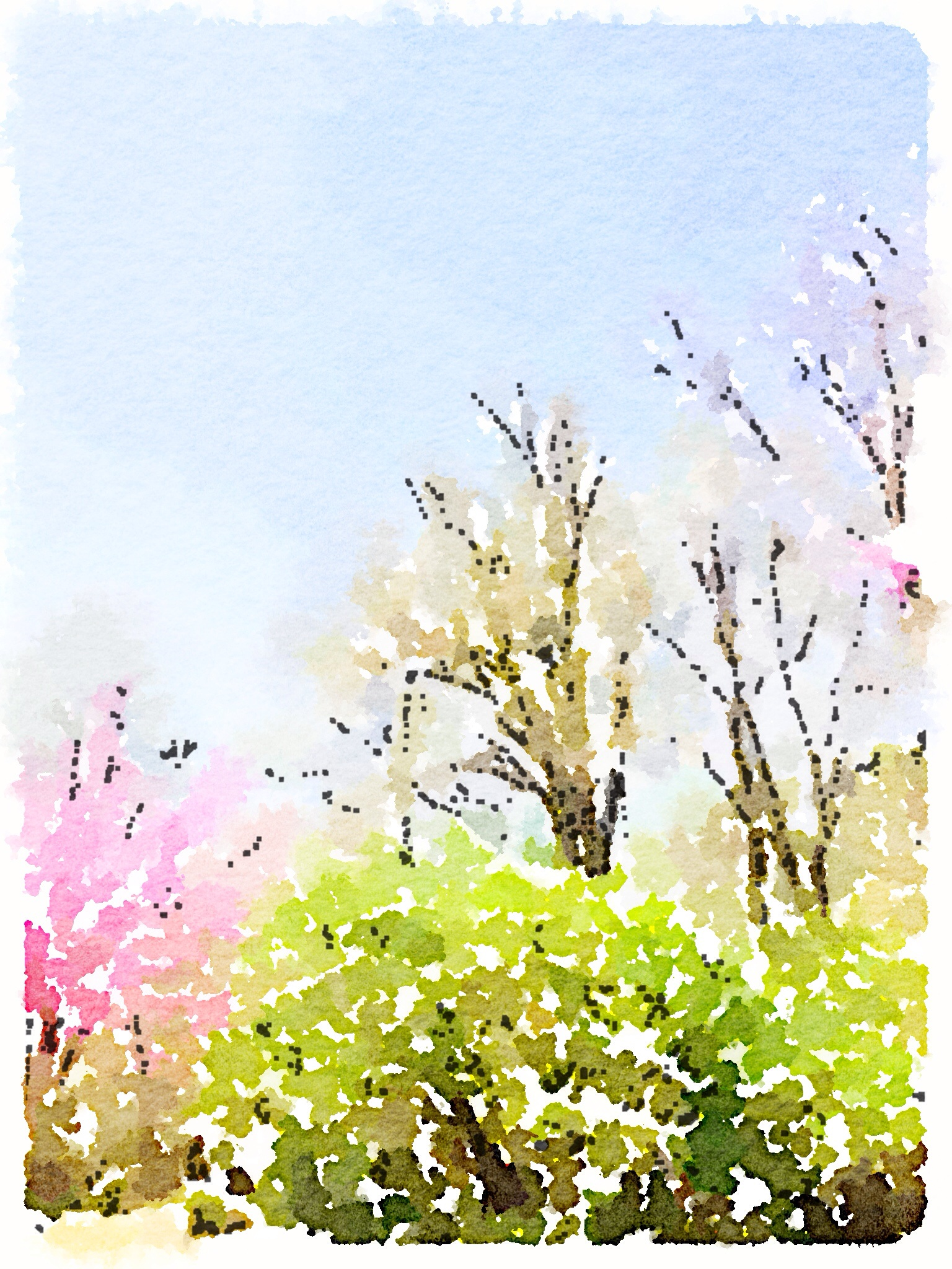 Local flora transformed with the app Waterlogue.