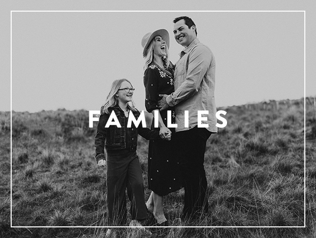 Portfolio_Families_DLP.jpg
