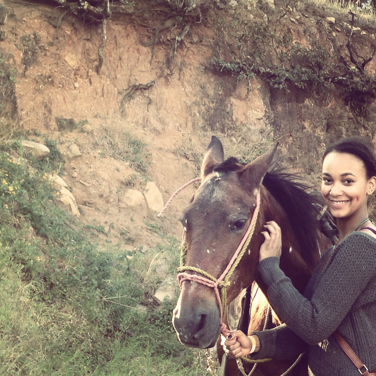 horse-costa-rica-monteverde-olivia-christine