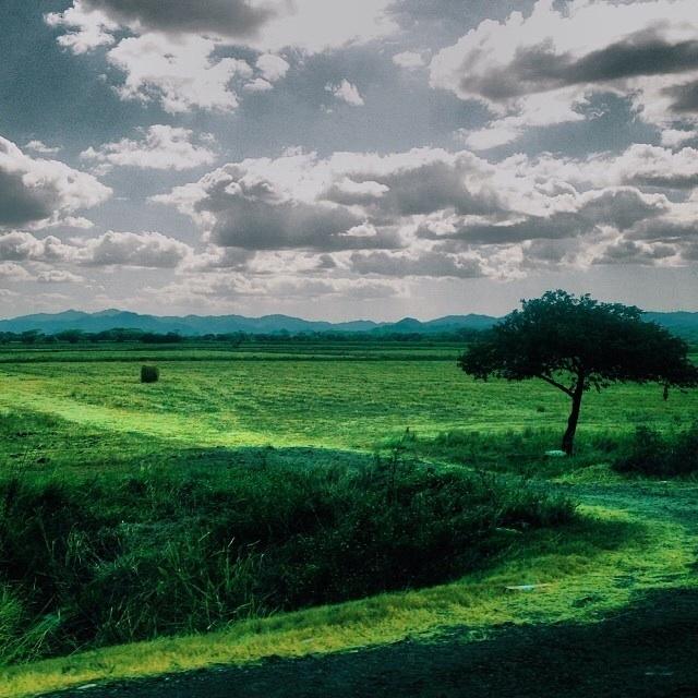 The Road to Papagayo    Photo: Olivia Christine
