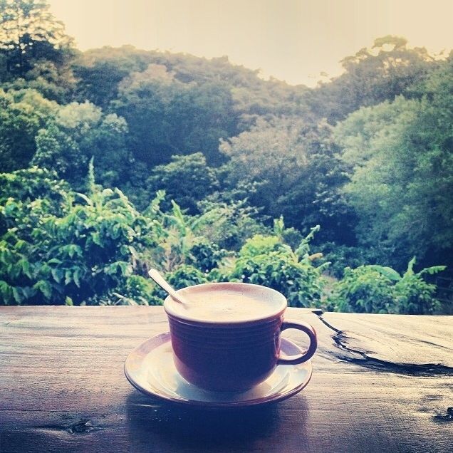 Costa Rican mornings  | Photo: Olivia Christine