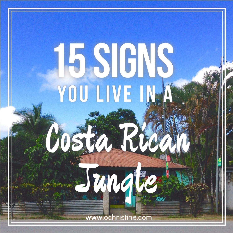 15-signs-you-live-in-a-costa-rican-jungle-olivia-christine.jpg