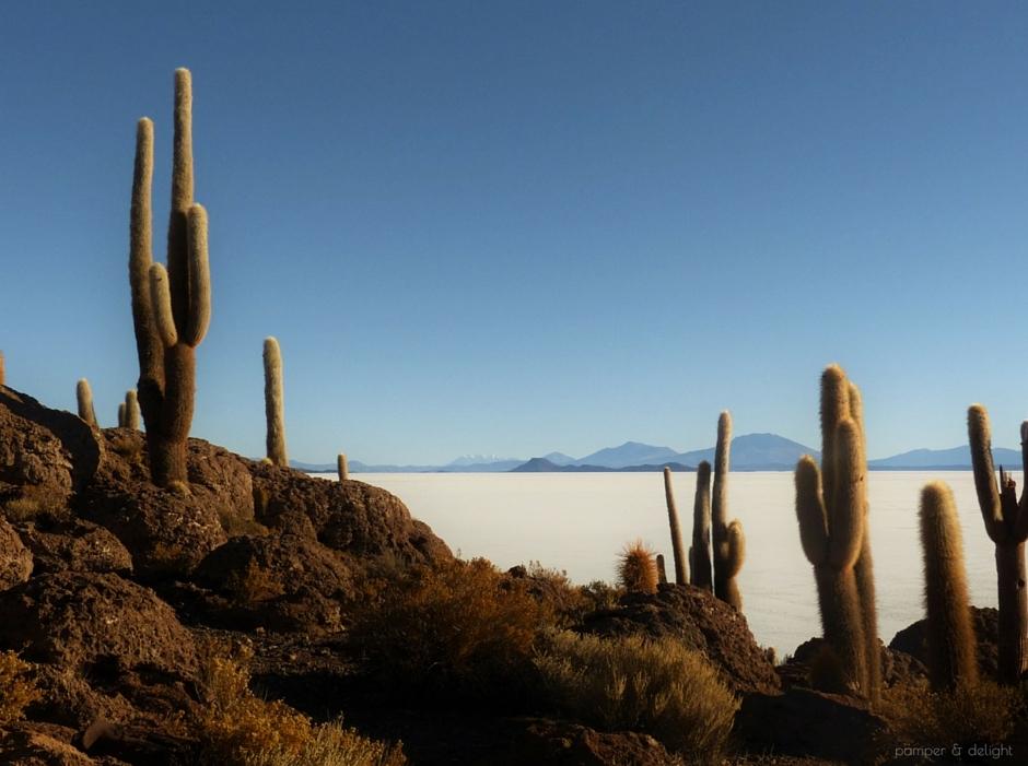 bolivia-ochristine-salt-flats-pamper-and-delight