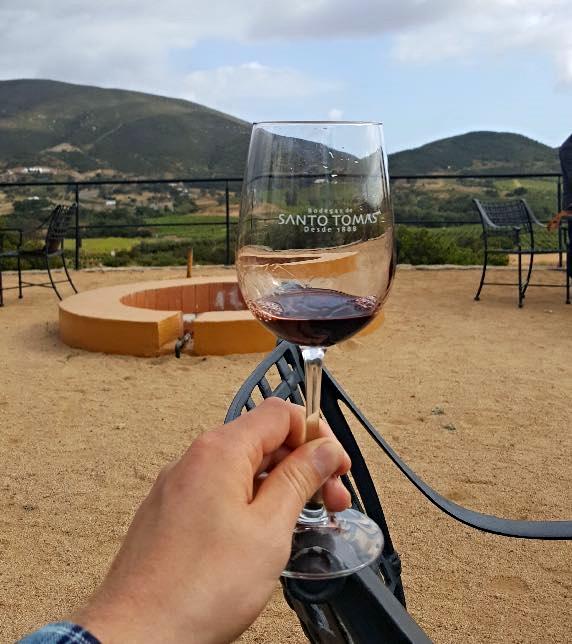 vineyards-valle-de-guadalupe