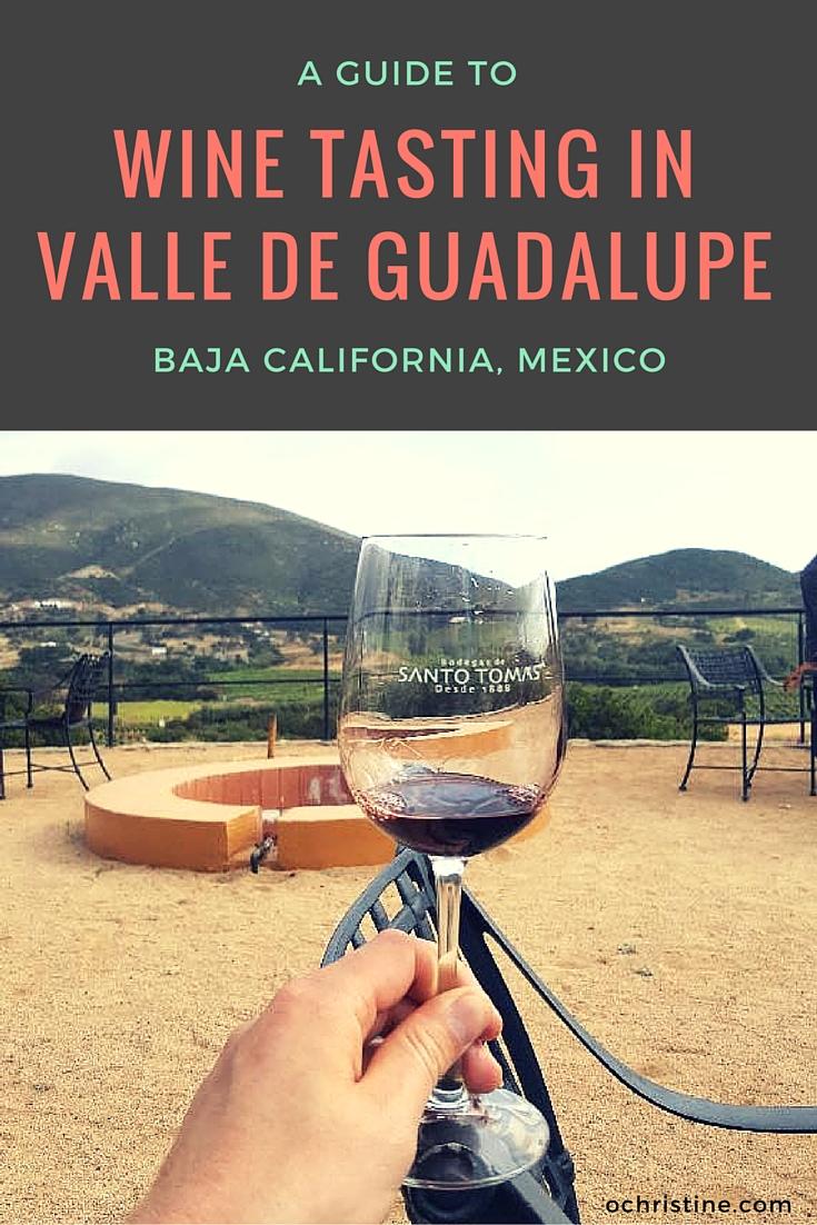 wine-tasting-vineyard-guide-valle-de-guadalupe-baja-california