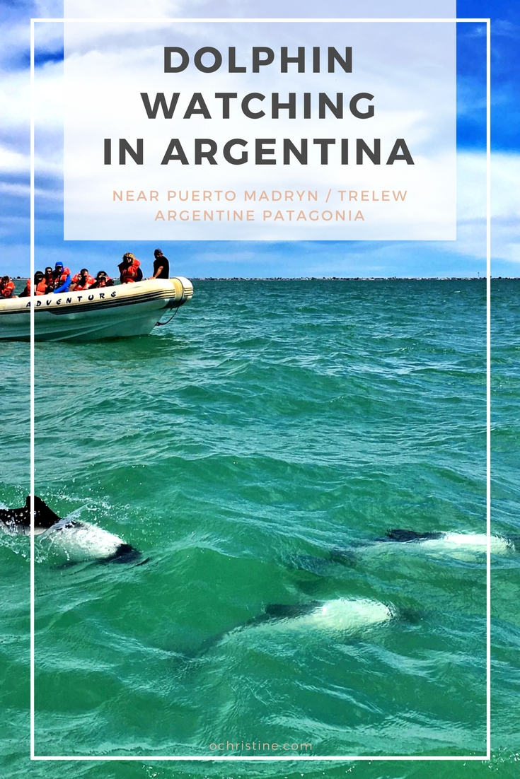 dolphin-watching-argentina-ochristine