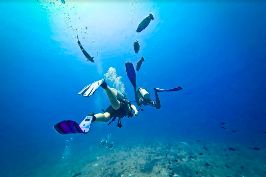 scuba-diving-maldives