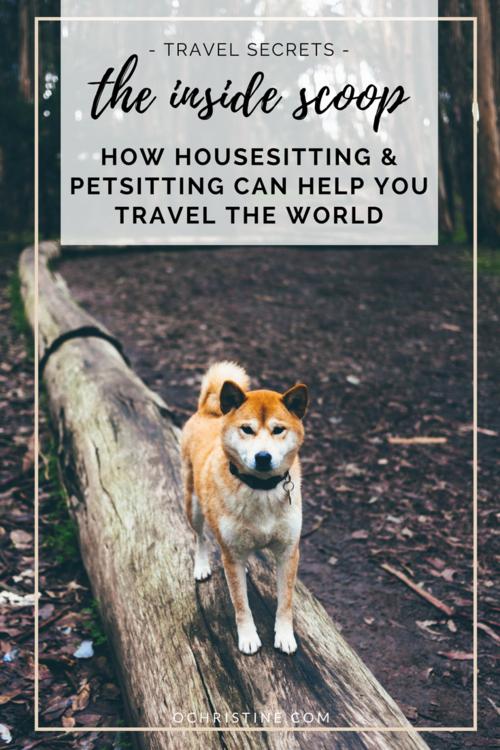 Travel Secrets: How Housesitting Can Help You Travel the World — O