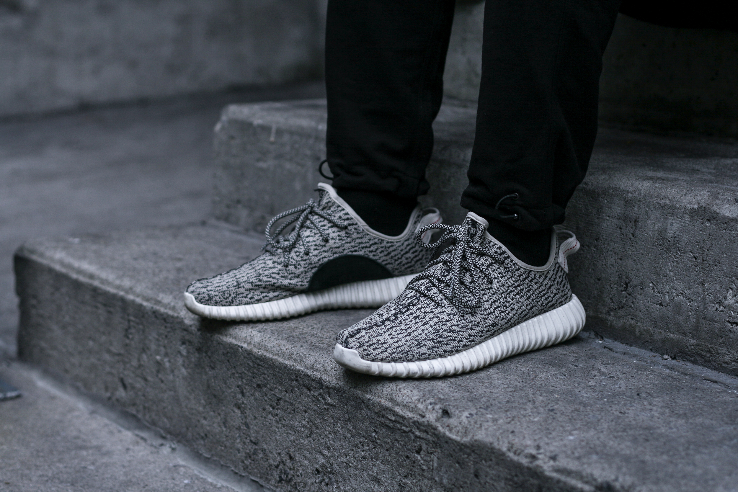 1. adidas Yeezy Boost 350 Turtledove