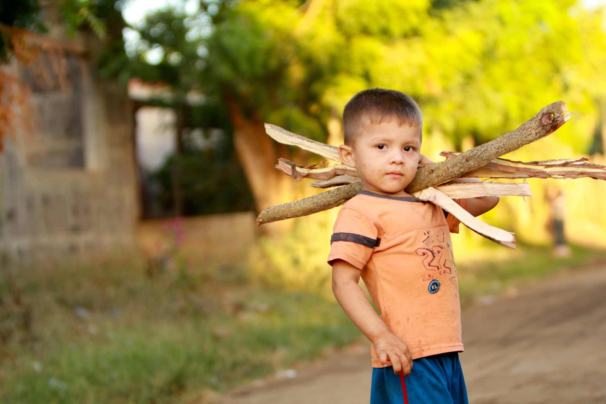 Young boy caring firewood in Nicaragua, January 2013