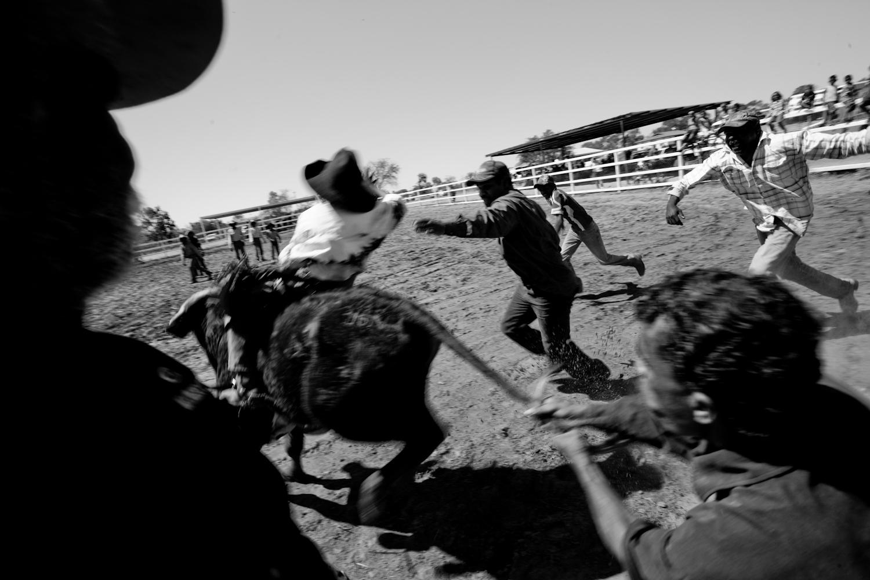 rodeo-6.jpg