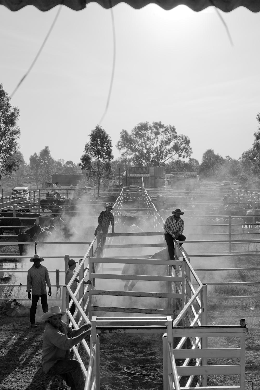rodeo-28.jpg