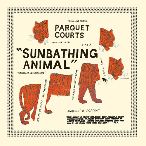 Parquet Courts - Sunbathing Animal.jpg