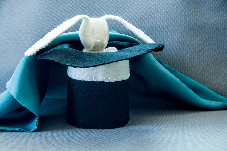 Magic Rabbit In Hat