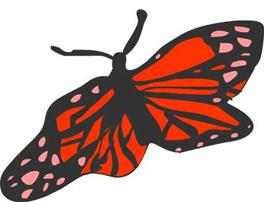 butterflylogo 2-1.jpg