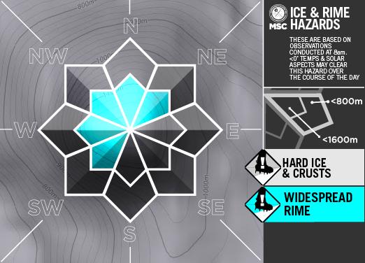 Ice&RimeArtboard+2+copy+3-A.png
