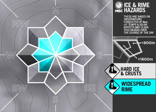 Ice&RimeArtboard+2+copy+11-A-1.png