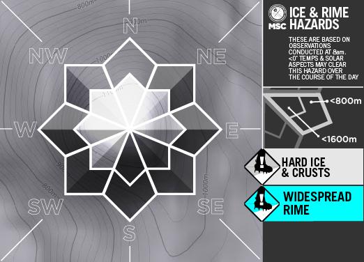 Ice&RimeArtboard+2+copy+13-A.png