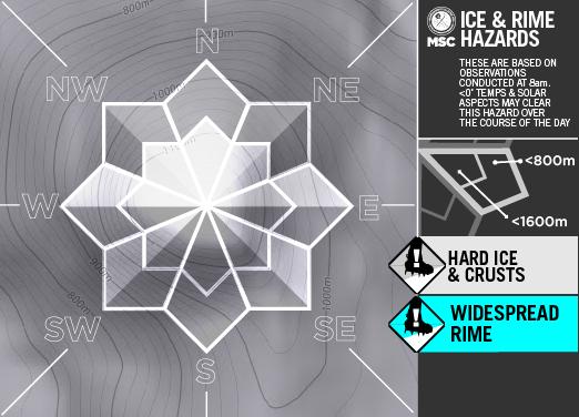 Ice&RimeArtboard+2+copy+12-A-1.png