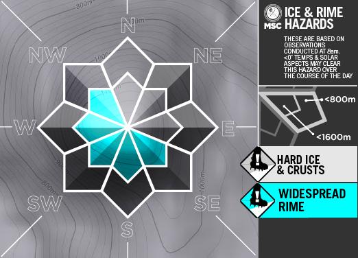 Ice&RimeArtboard+2+copy+5-A.png
