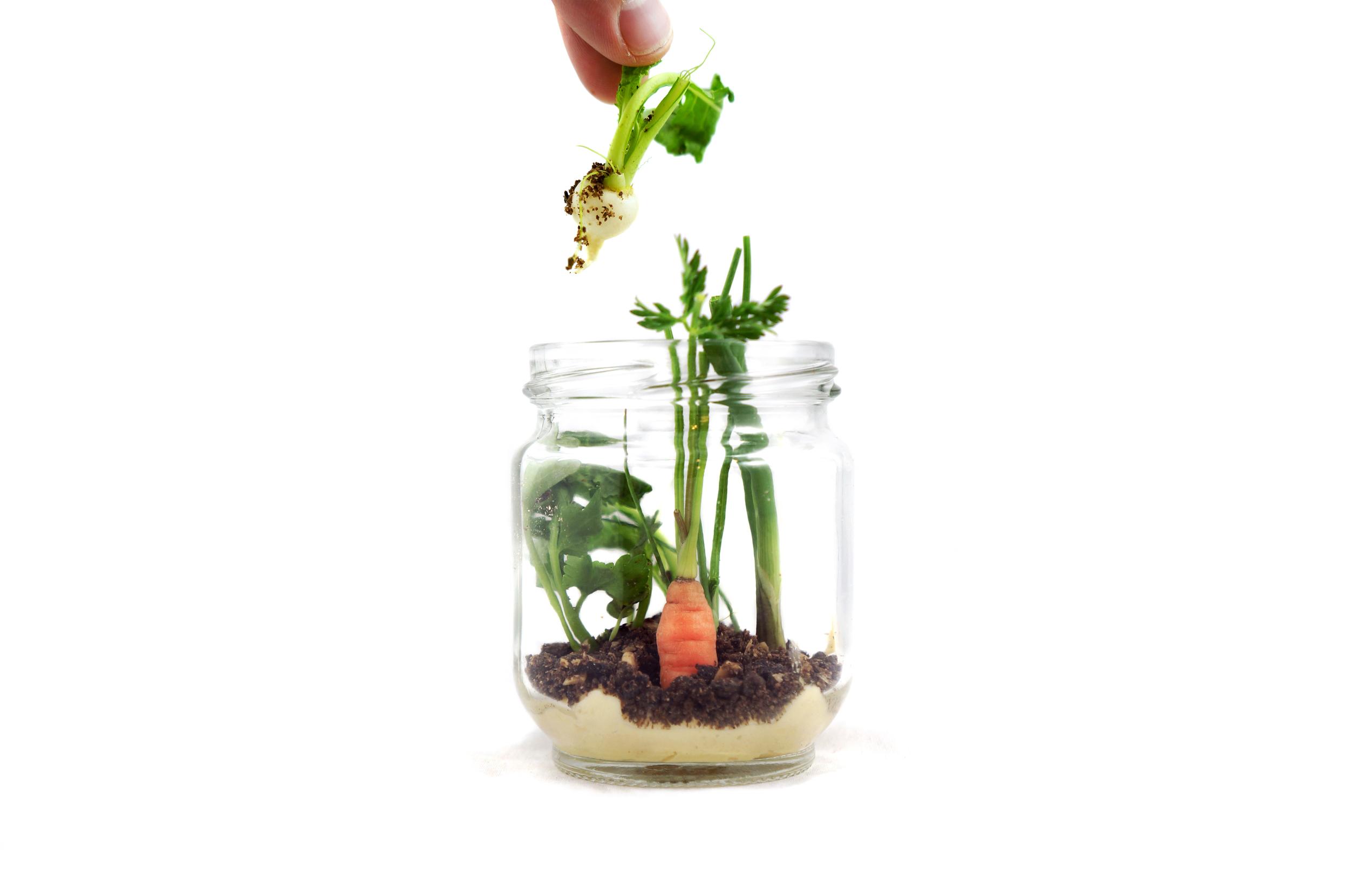crudite in a jar