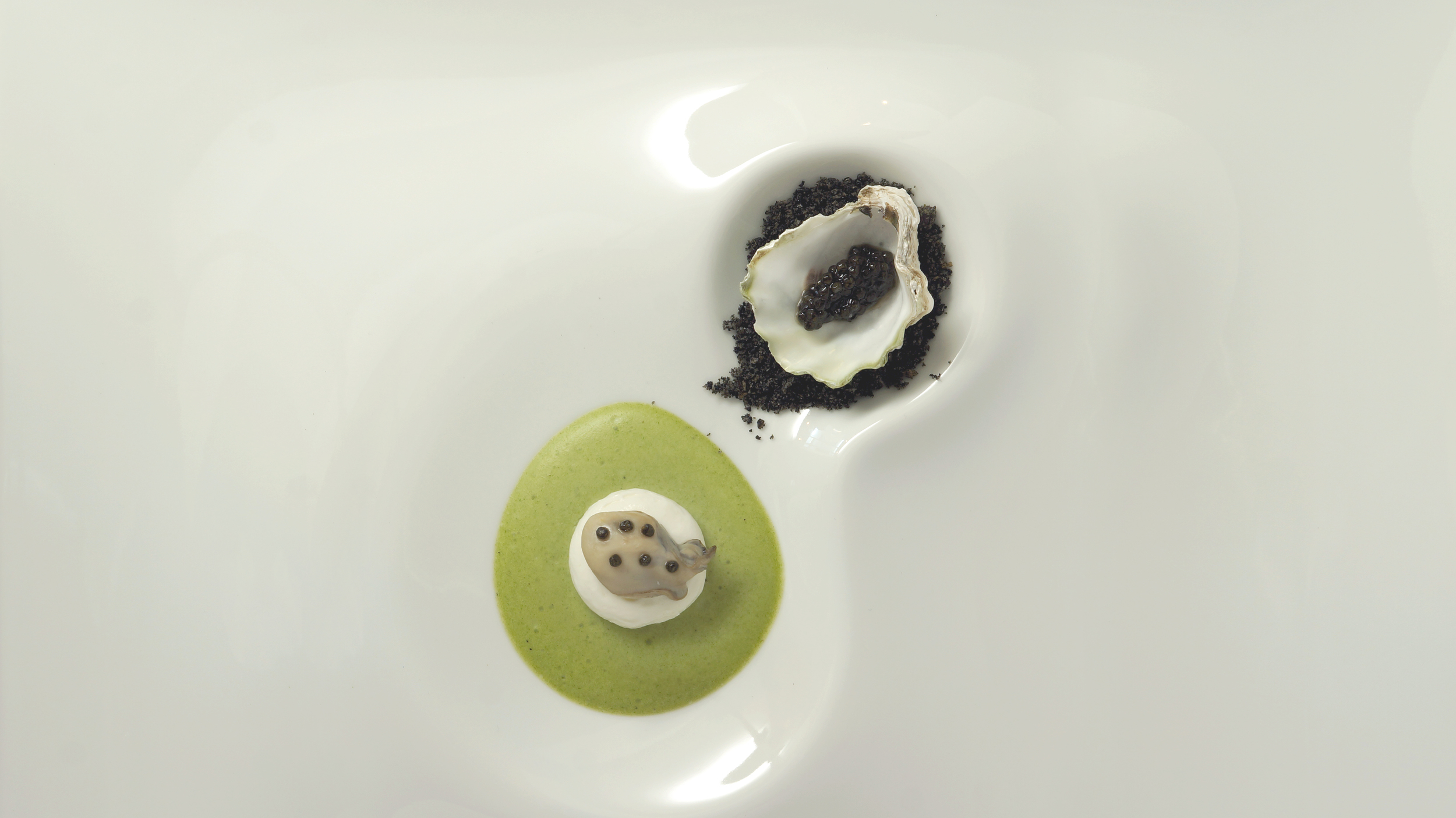 oyster vichyssoise