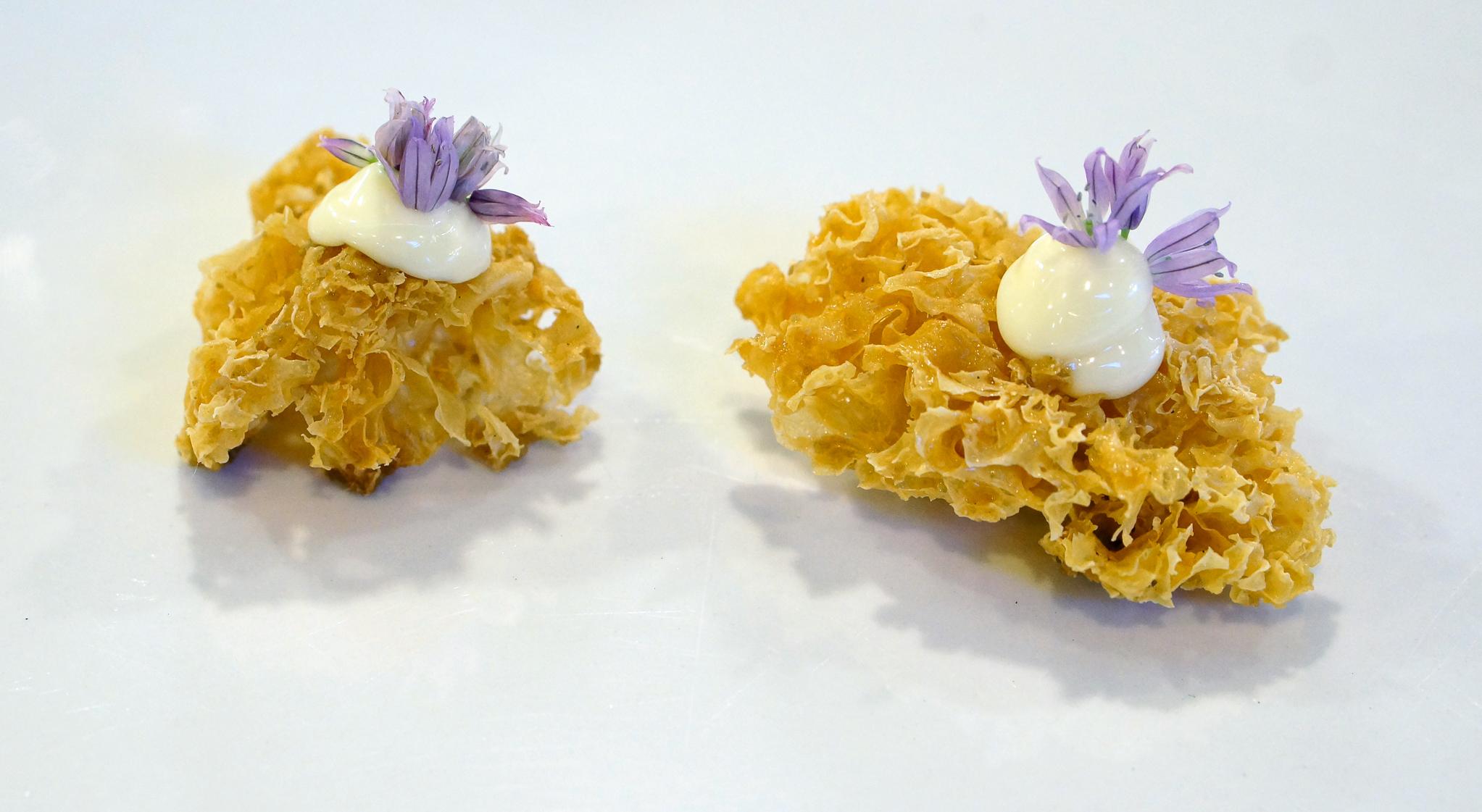 2014 - PANASIAN - sour cream & onion white fungus.jpg