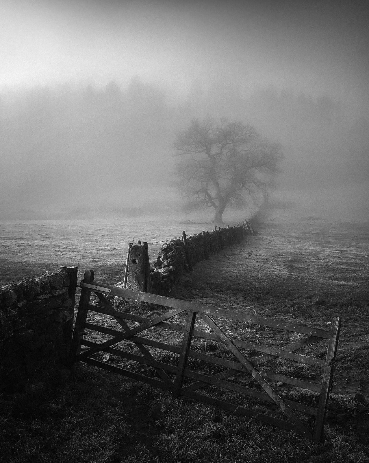 Winter+Scene.jpg