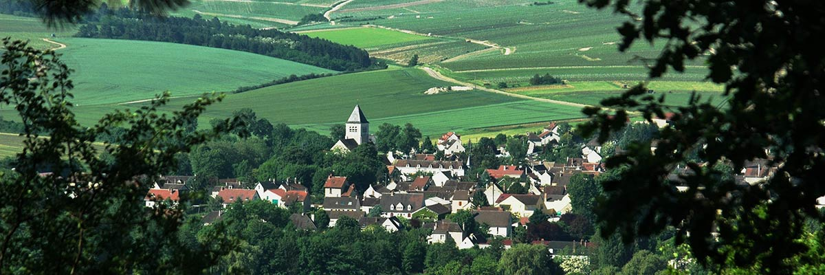 Chablis-town-and-vineyards.jpg