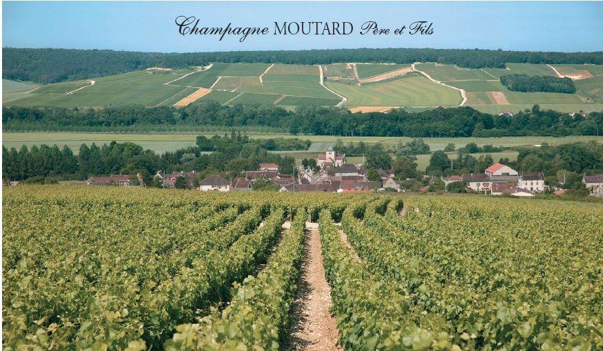 vigne et village de Buxeuil avec champagne moutard Père et Fils format jpg.jpg