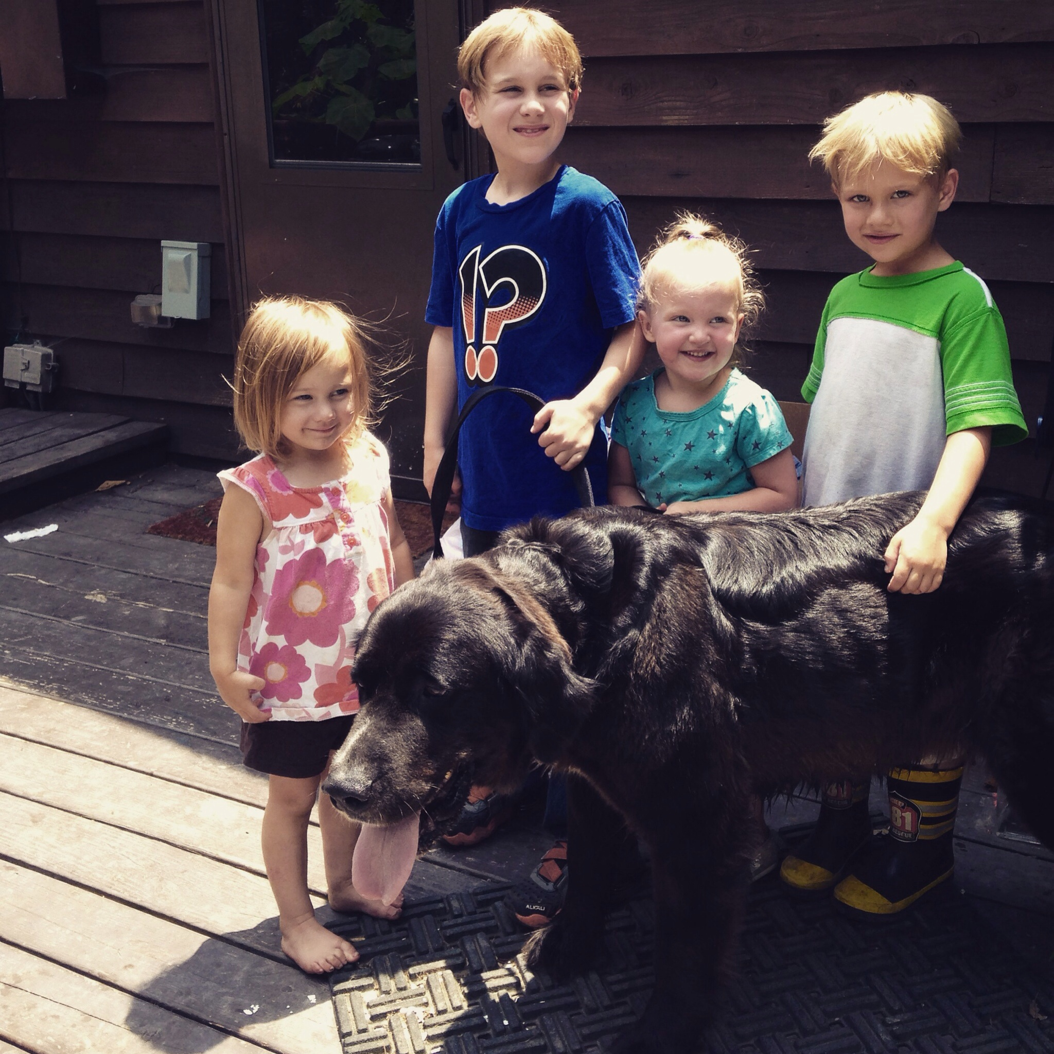 The last picture of Lexie with four of our five babies.