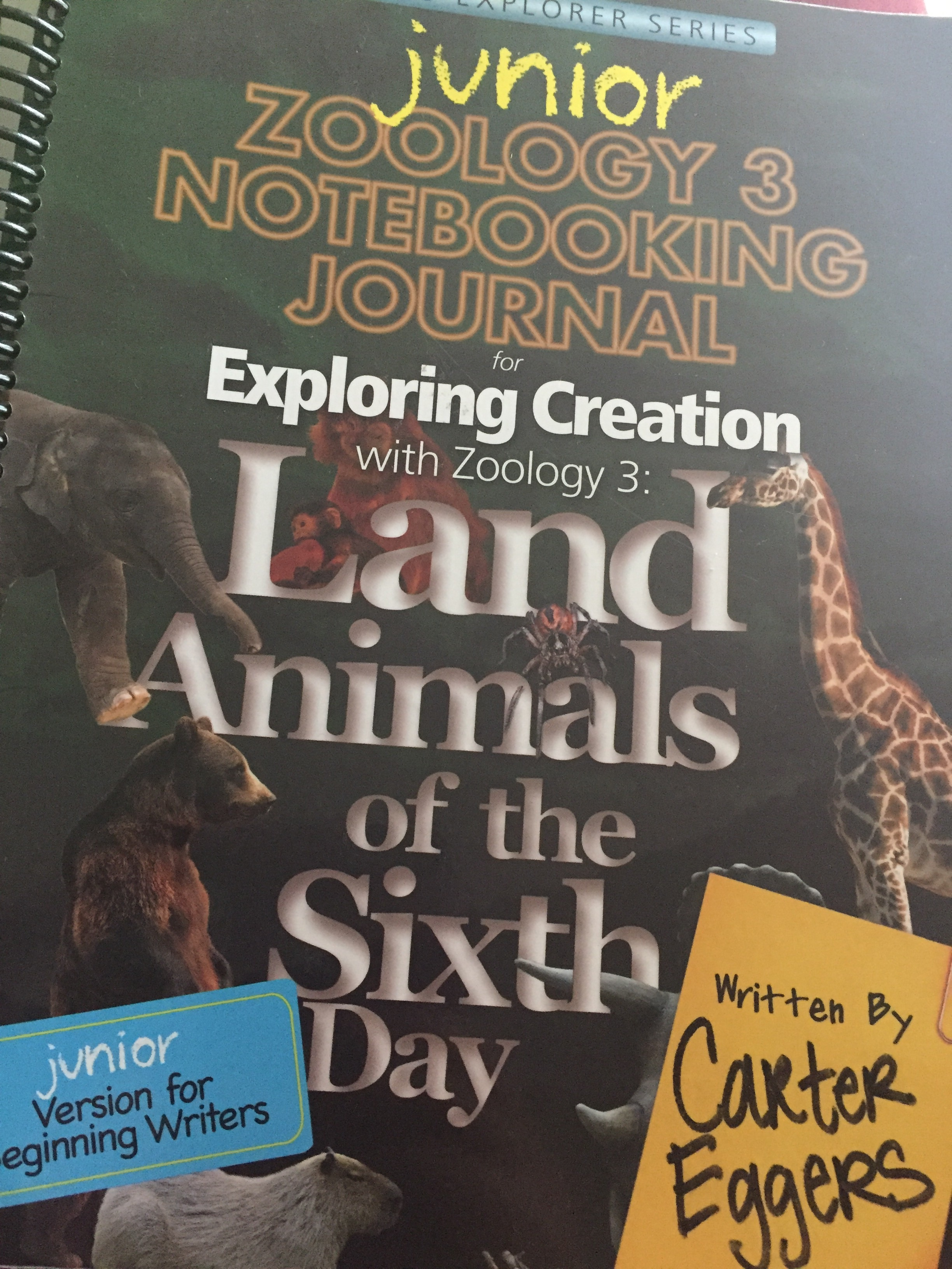 You can even buy these very cool large spiral science notebooks that pair with the text for additional science fun. Very cool.