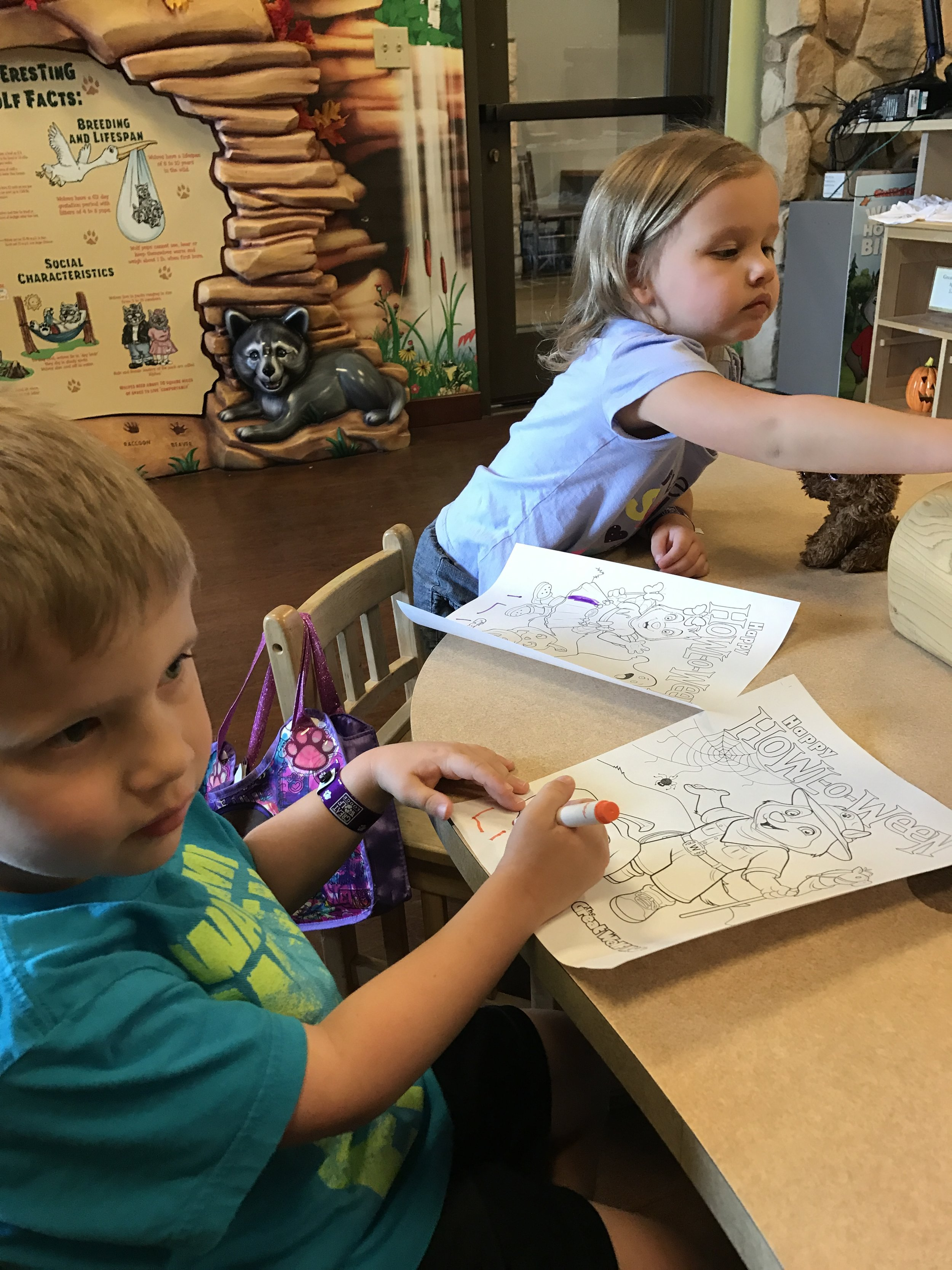 Cub Club - coloring and crafts