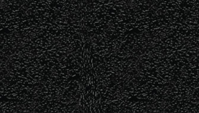 4113 - Black
