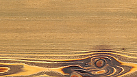 88105 - Colorado Larch