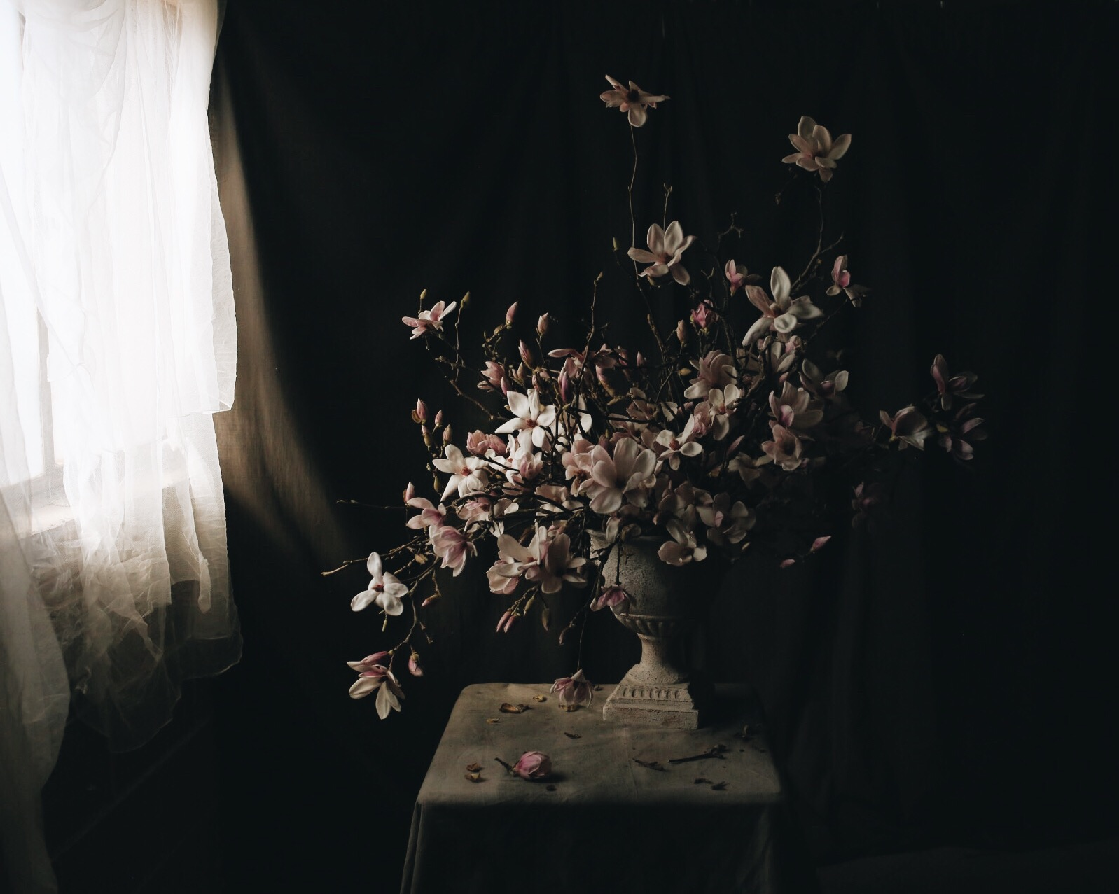Photography by Mandi Nelson