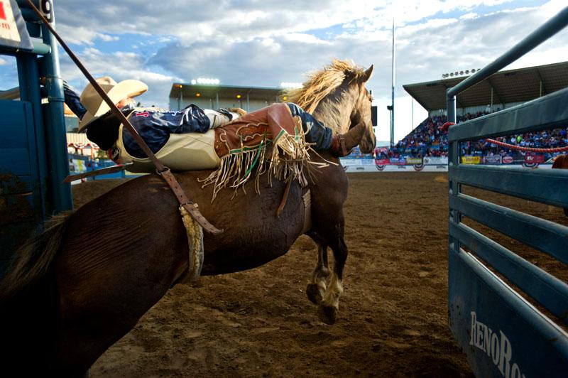 2013 rodeo.jpg