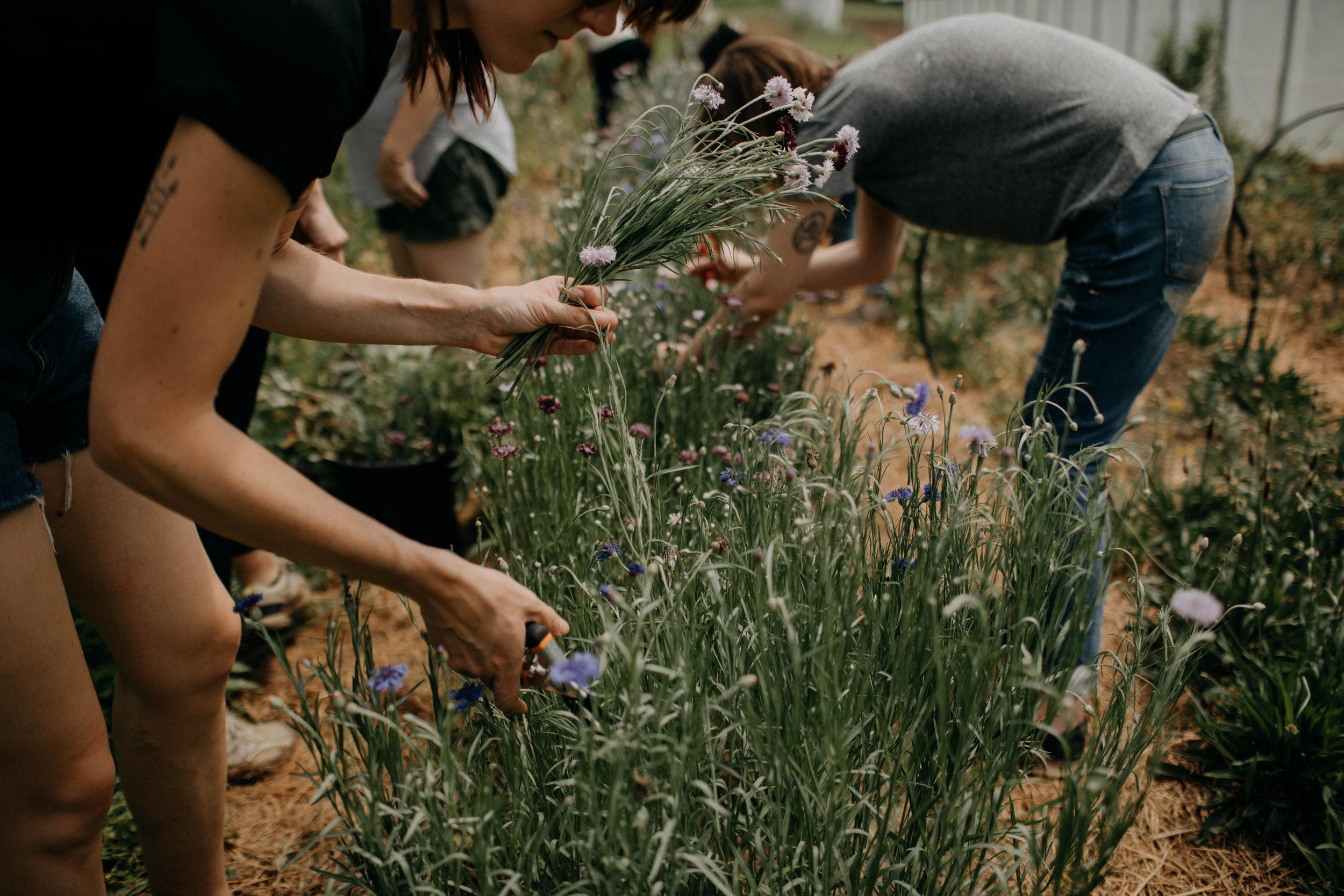nashville floral workshop nashville tennessee wedding photographer23.jpg