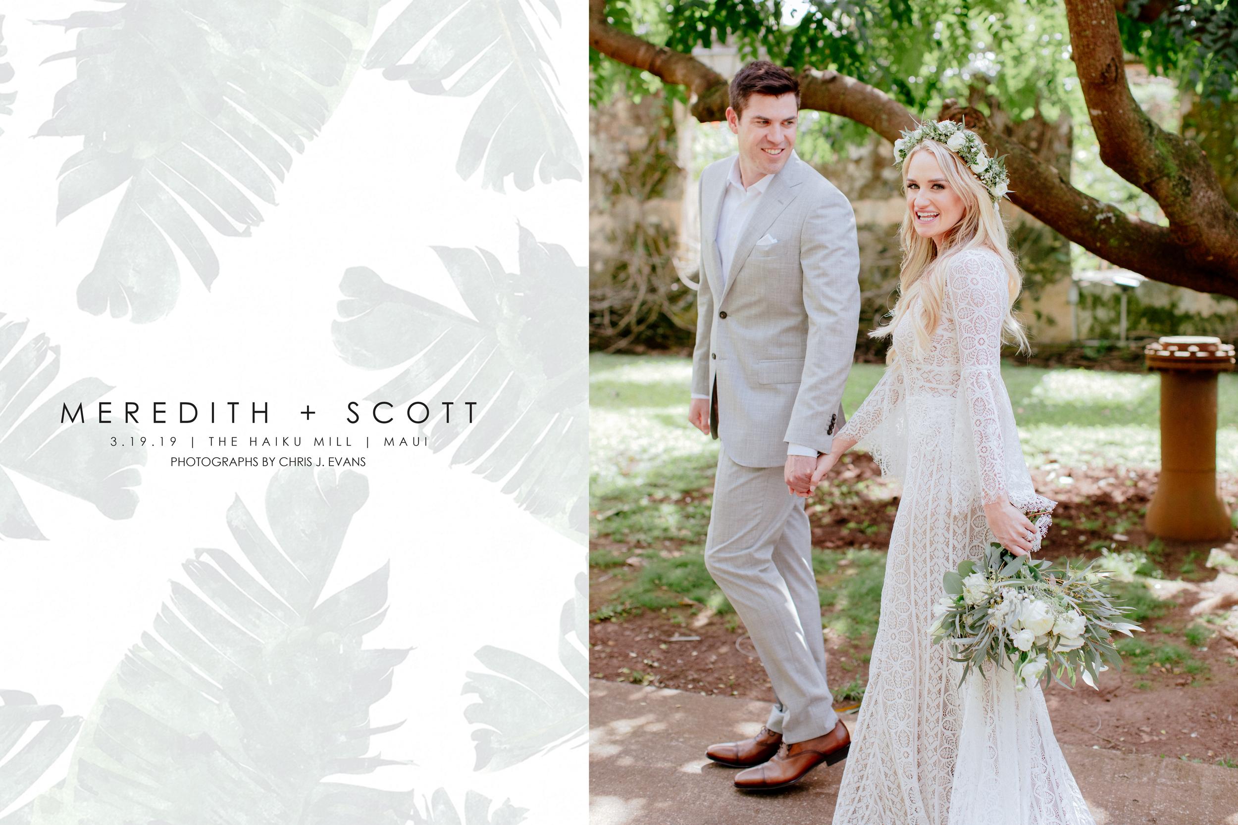 3.19.19-Meredith-Scott.jpg