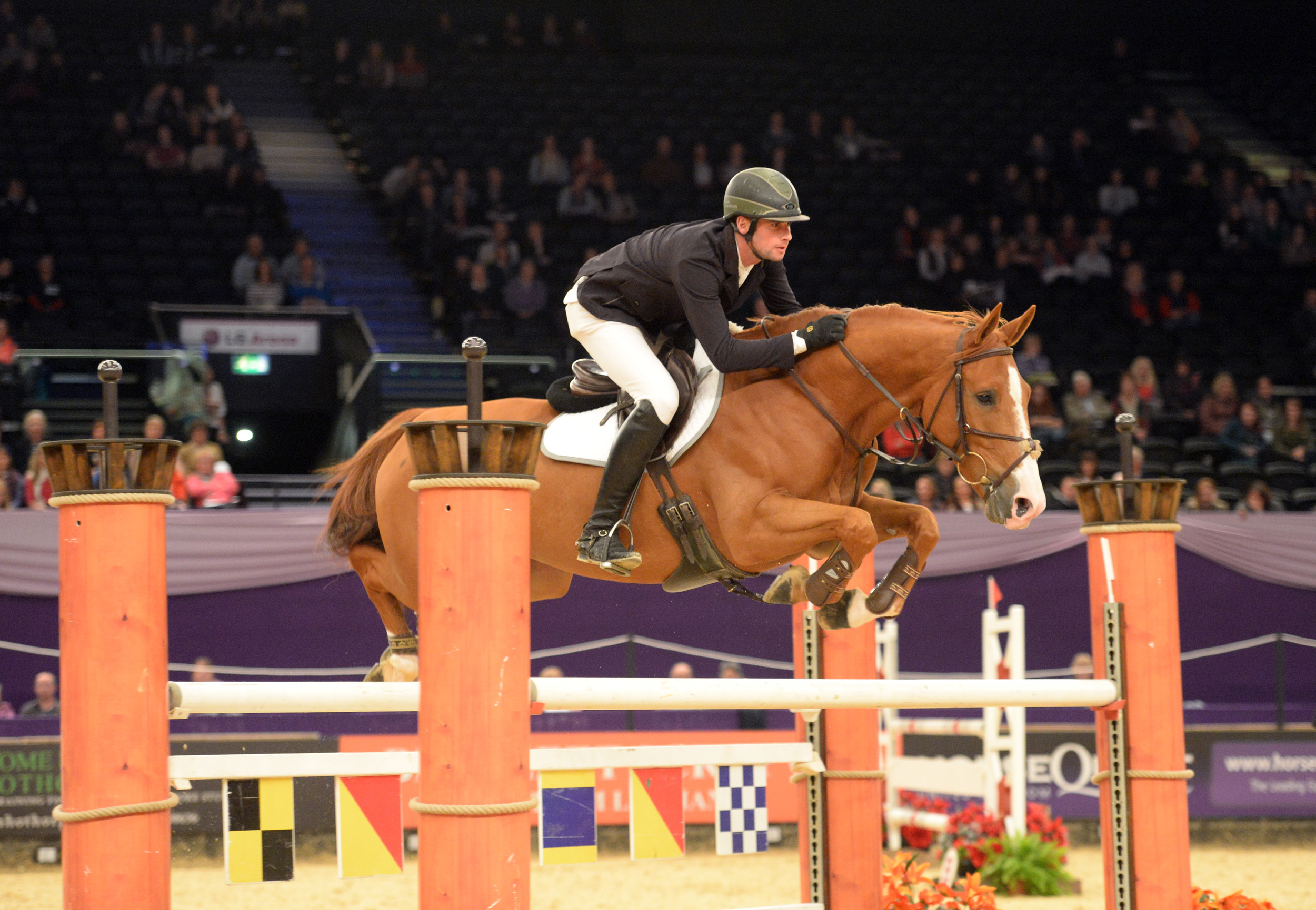 Global van't Braunerhof - Best Seven Year Old HOYS 2013