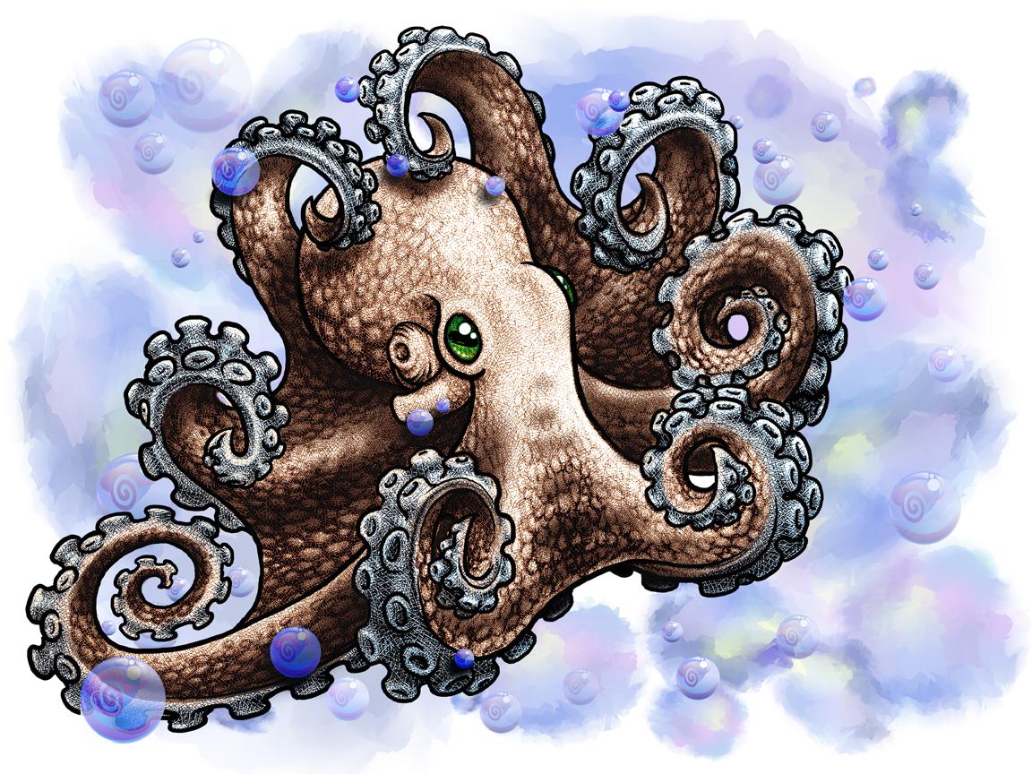 octopus_3_web.jpg